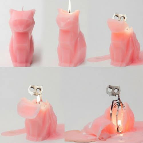 gifts for cat lovers pyropet candles