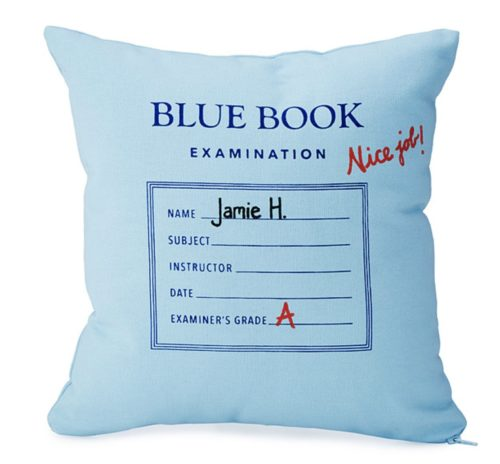 gifts for professors pillow