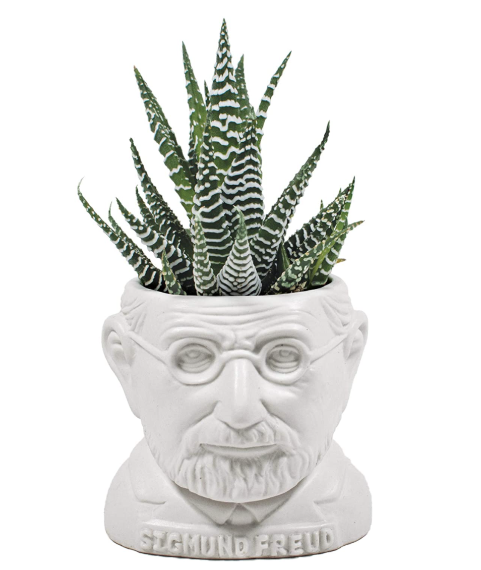 gifts-for-professors-planter