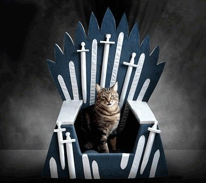 game of thrones gifts cat bed
