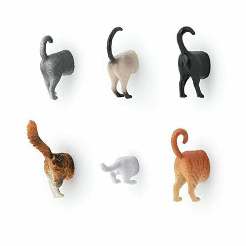 novelty-gifts-cat-magnets