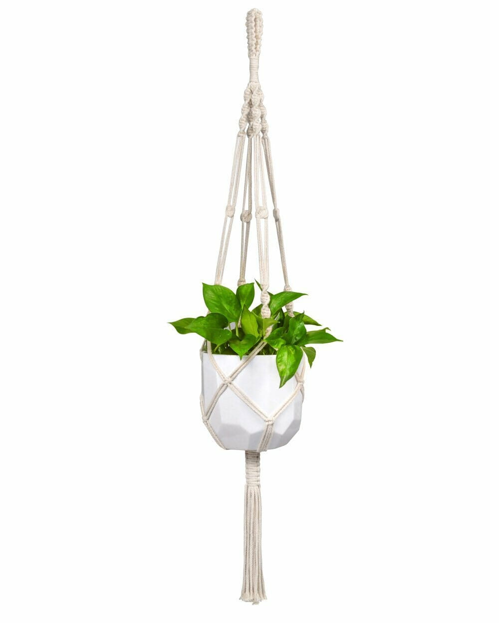 cotton-second-anniversary-gifts-planter