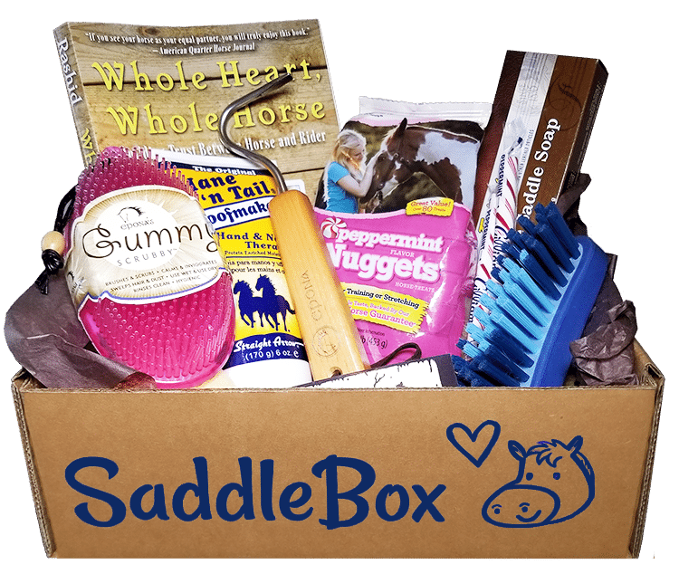gifts-for-horse-lovers-saddlebox