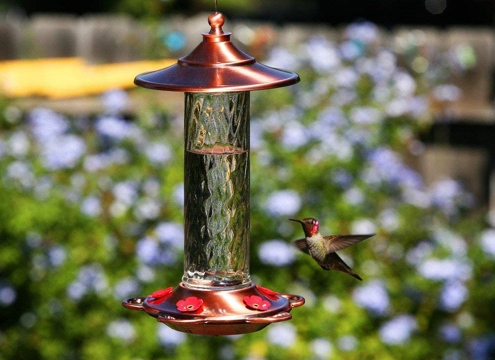 gifts-for-gardeners-hummingbird-feeder
