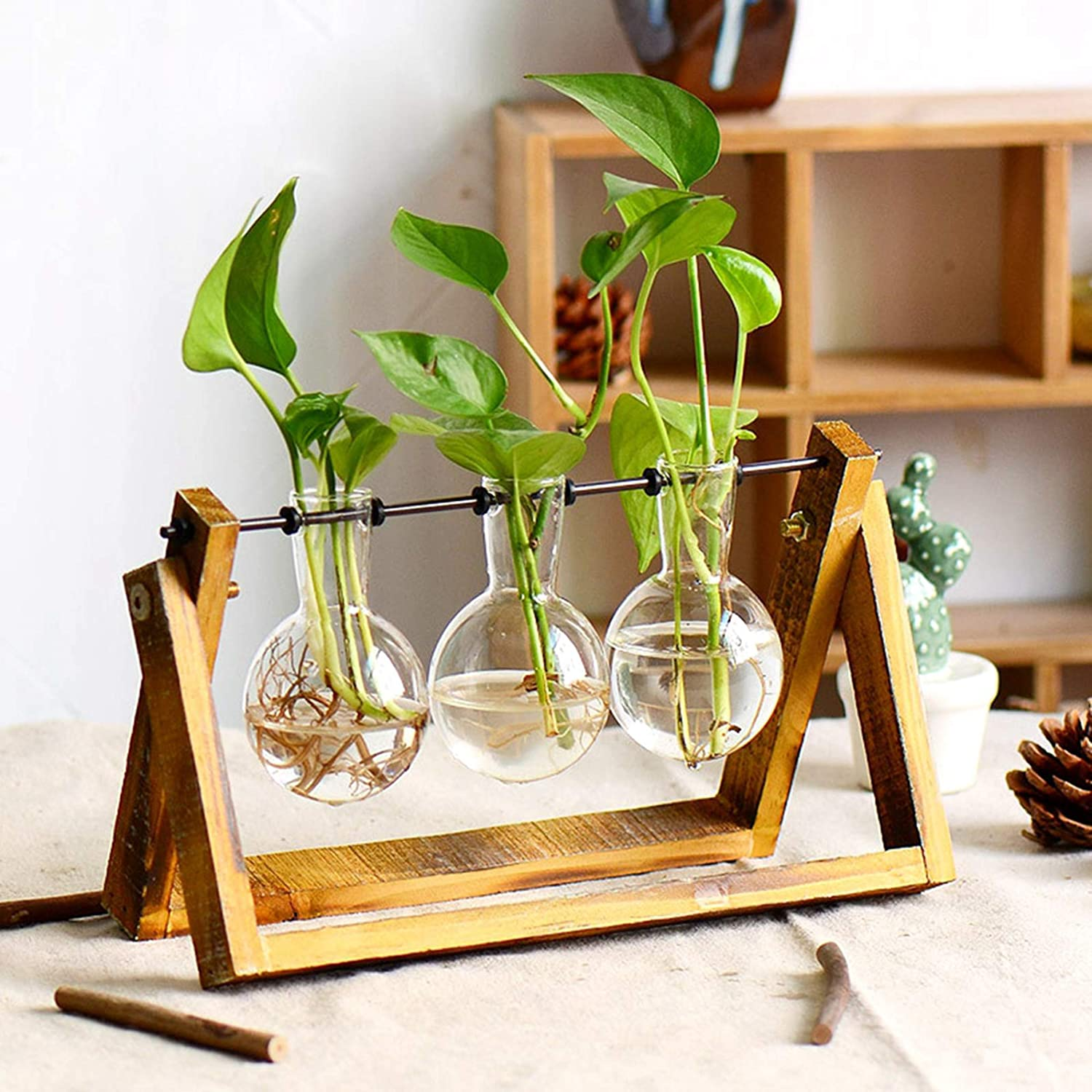 gifts-for-gardeners-bulb