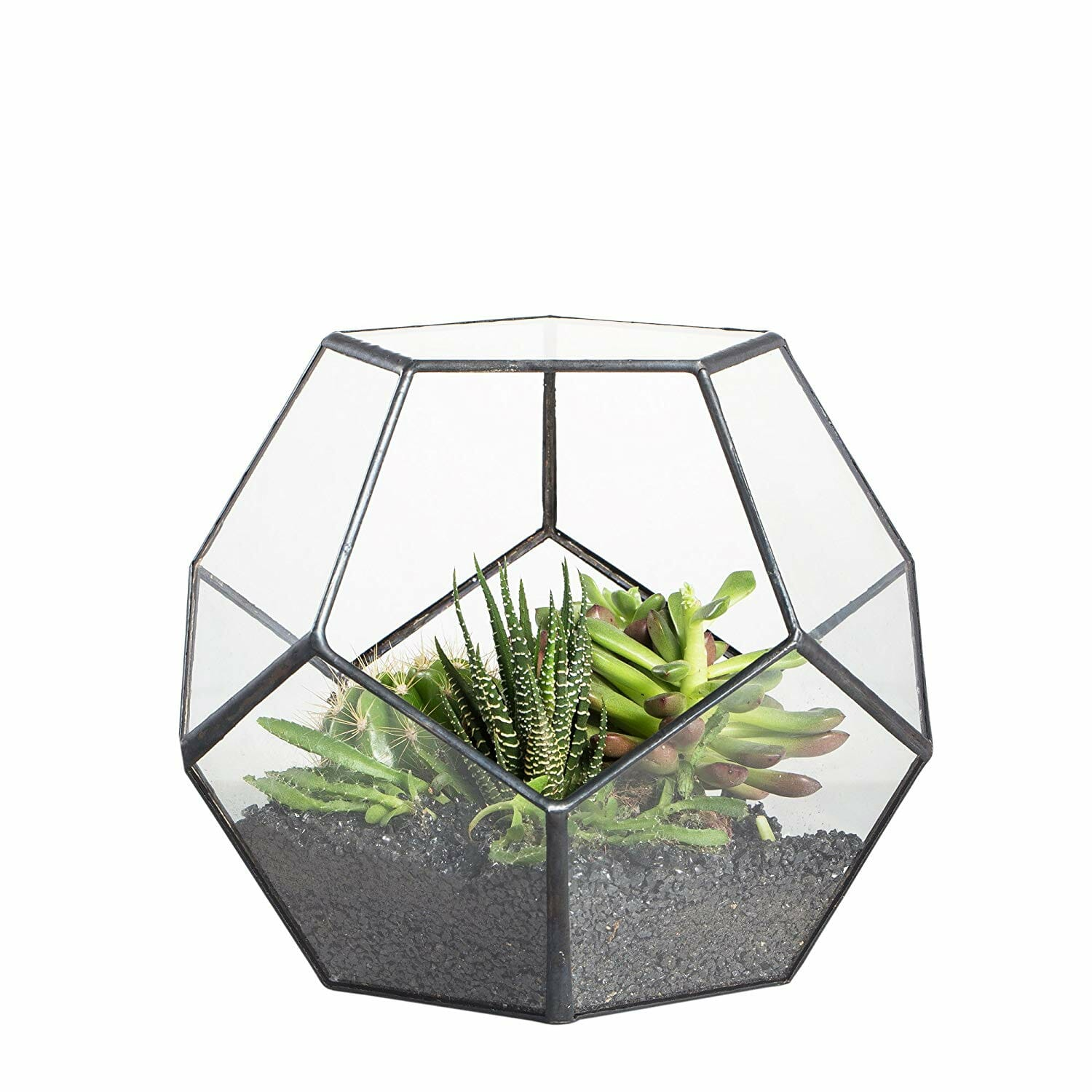 gifts-for-gardeners-terrarium