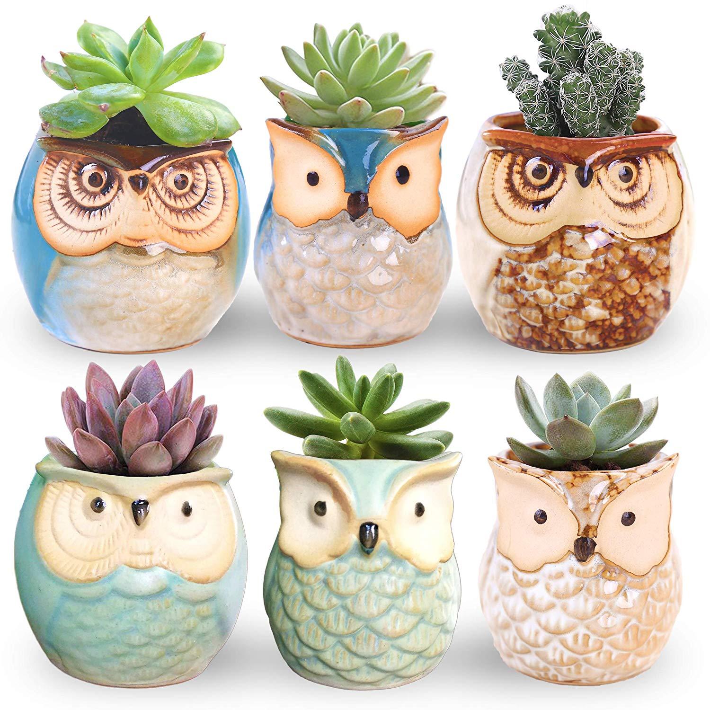 teacher-gifts-flower pot