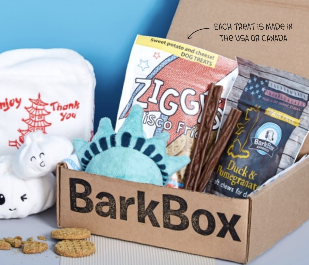 monthly-subscription-boxes-bark-box