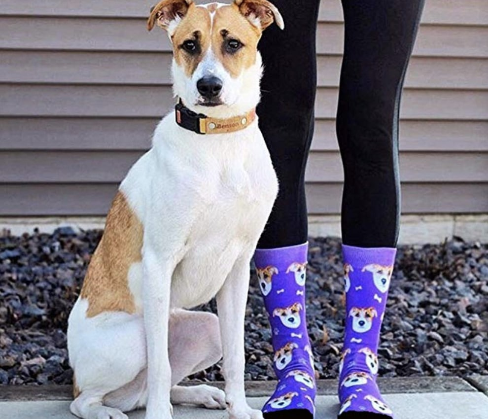 gifts-for-dog-socks