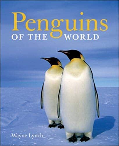 cute-penguin-gift-book