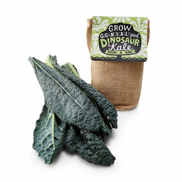 white-elephant-gifts-bathroom-kale