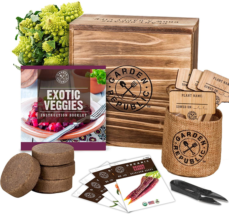 funky-veggie-grow-kit
