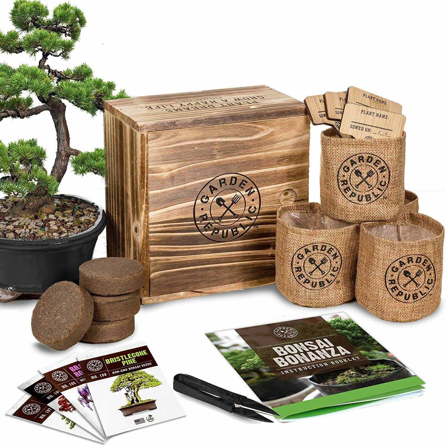 wood-gifts-bonsai