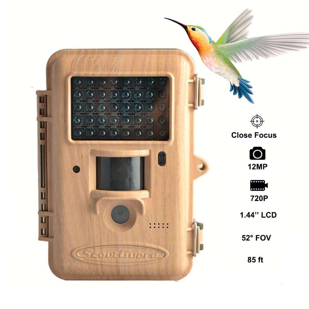 gifts-for-bird-lovers-camera