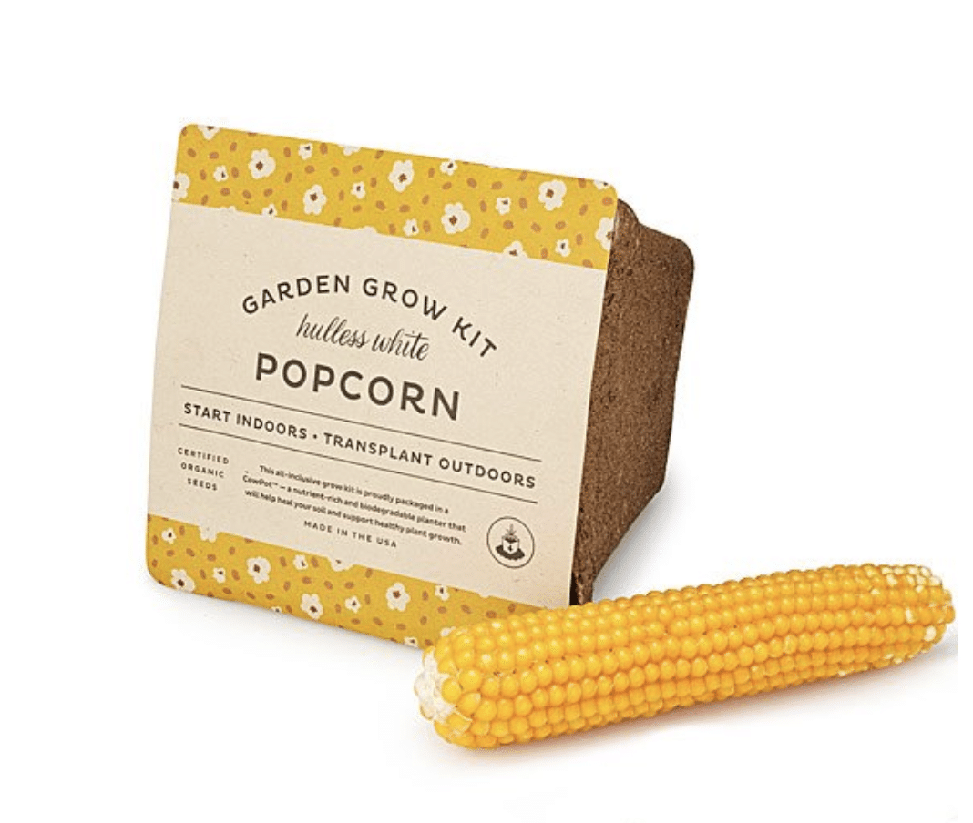 gifts-for-movie-lovers-grow-popcorn