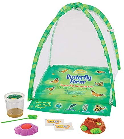 gifts-for-7-year-old-girls-butterfly-kit