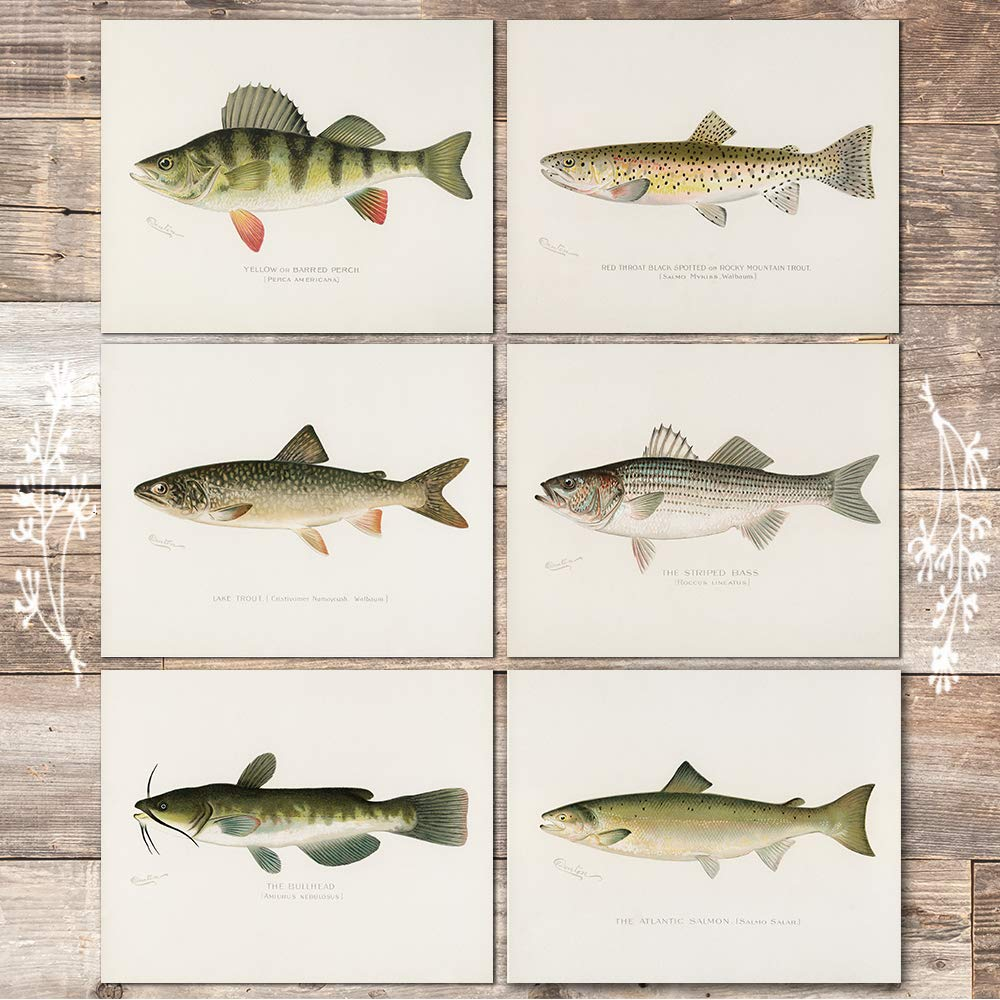 gifts-for-fisherman-prints