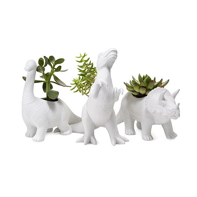 funny-fathers-day-gifts-planters