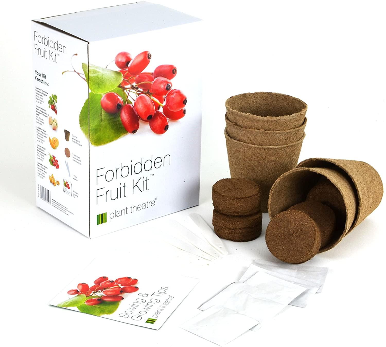 4th-anniversary-gift-fruit-grow-kit