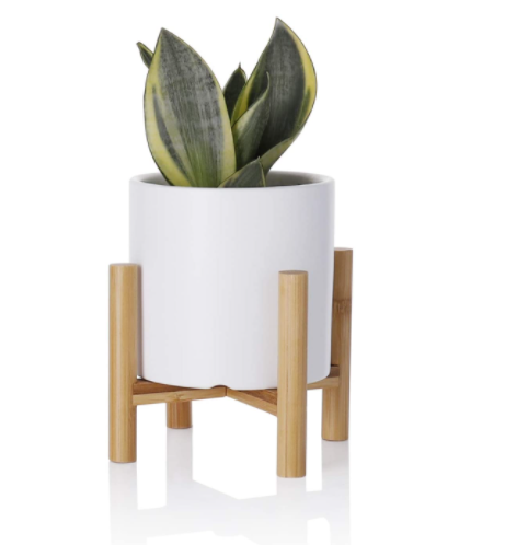 last-minute-christmas-gifts-planter