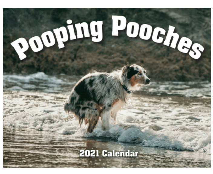funny-fathers-day-gifts-pooping-pooches