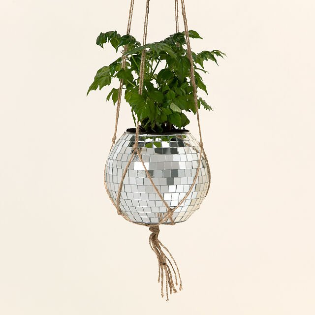 gifts-for-women-in-their-30s-planter