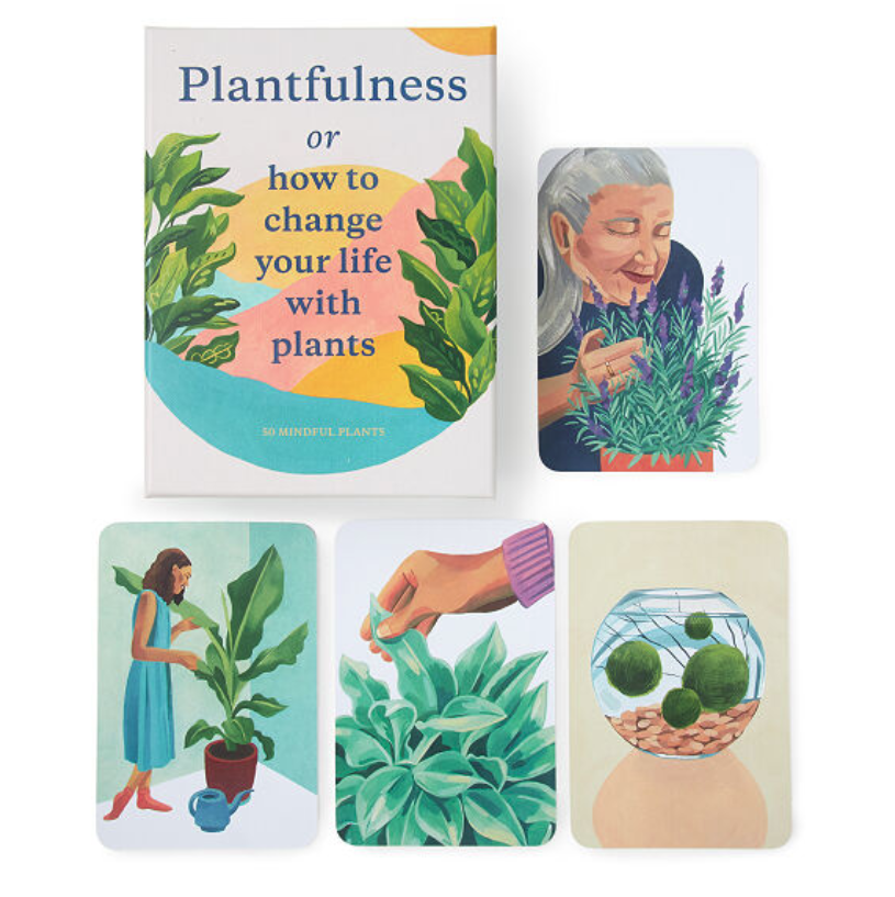 gifts-for-coworkers-plant-mindfulness-cards