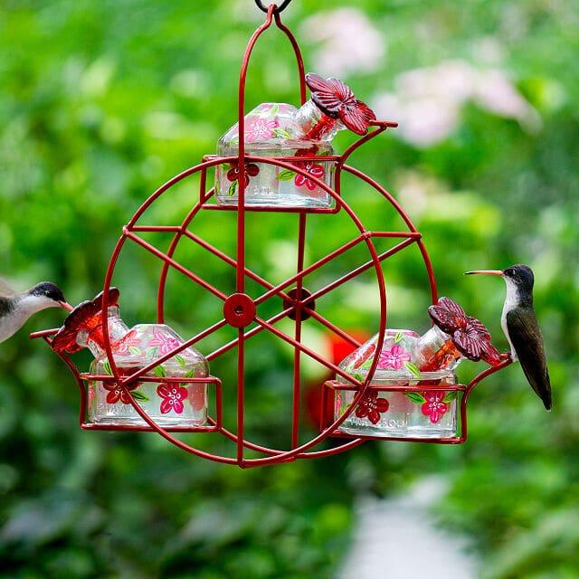 hummingbird-gifts-feeder