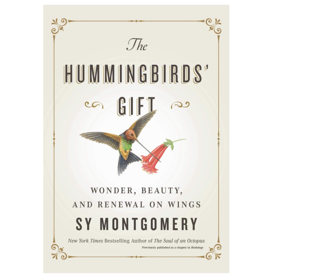 hummingbird-gifts-book