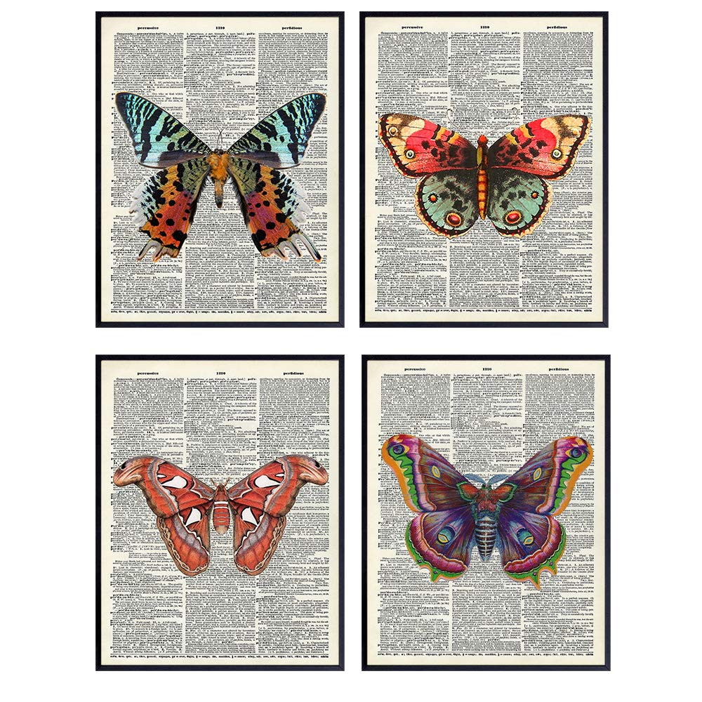 butterfly-gifts-print