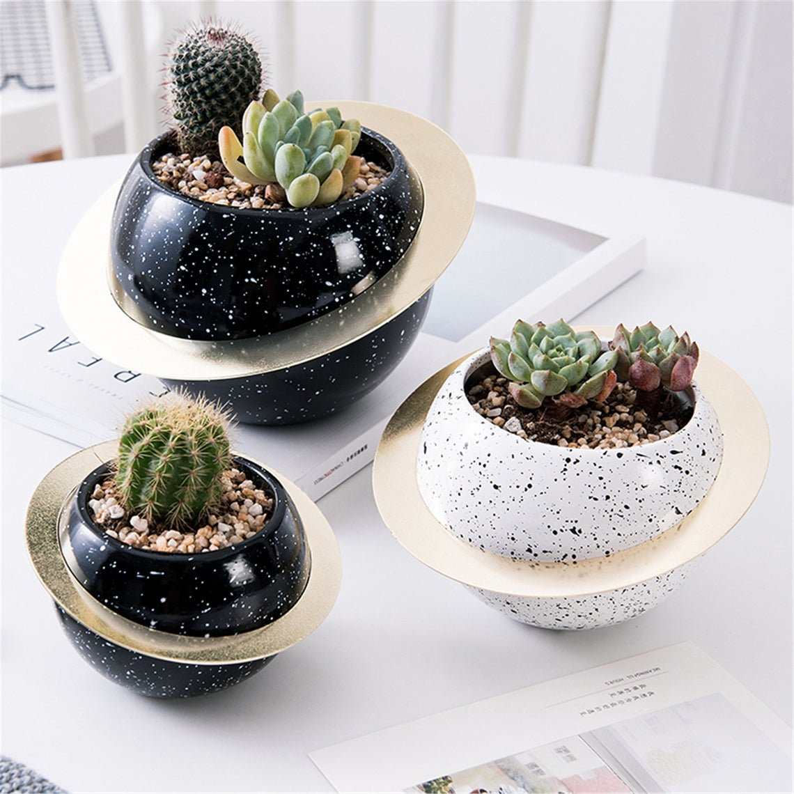 astronomy-gifts-planters
