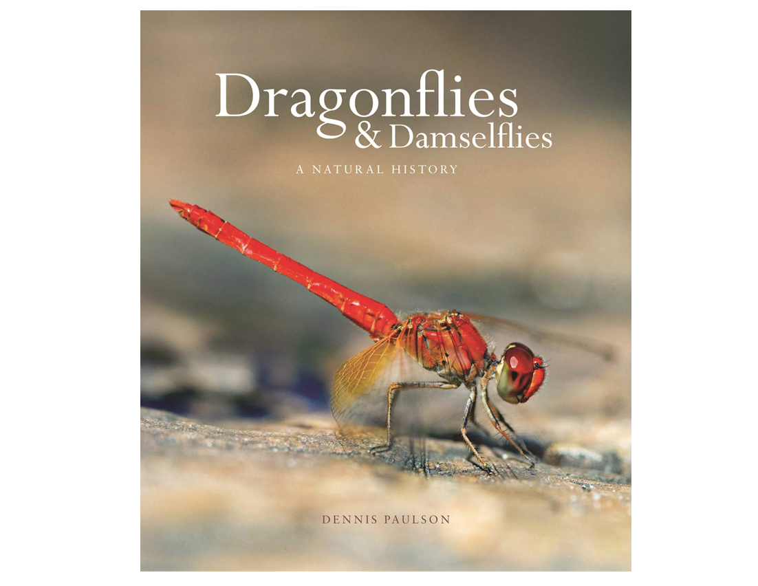 dragonfly-gifts-dragonfly-and-damselfly-book