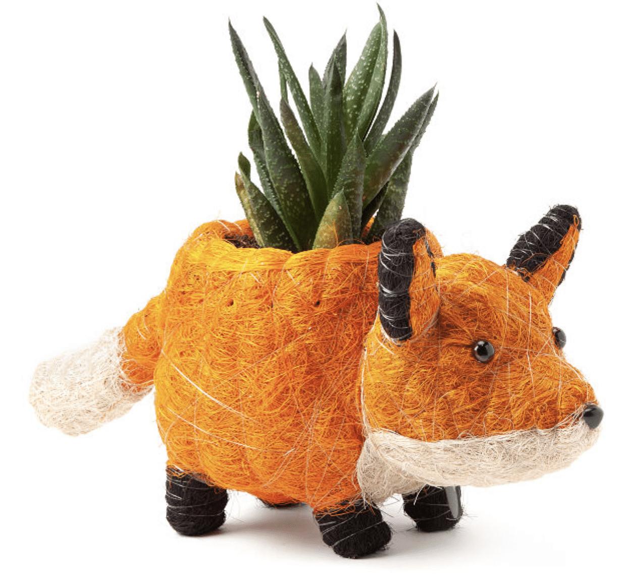 fox-gifts-planter