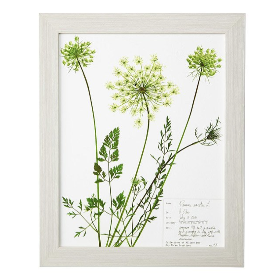 13th-anniversary-gifts-lace-pressed-botanical